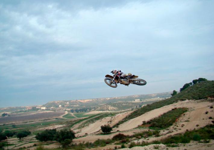 Jelen_2010